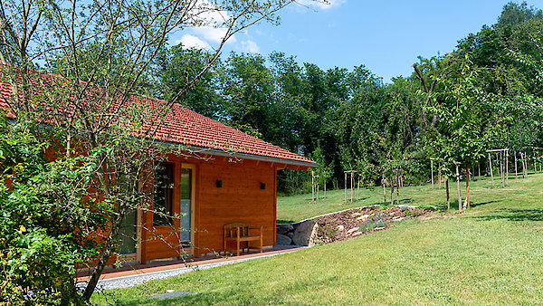 Chalet in der Natur in Drachselsried